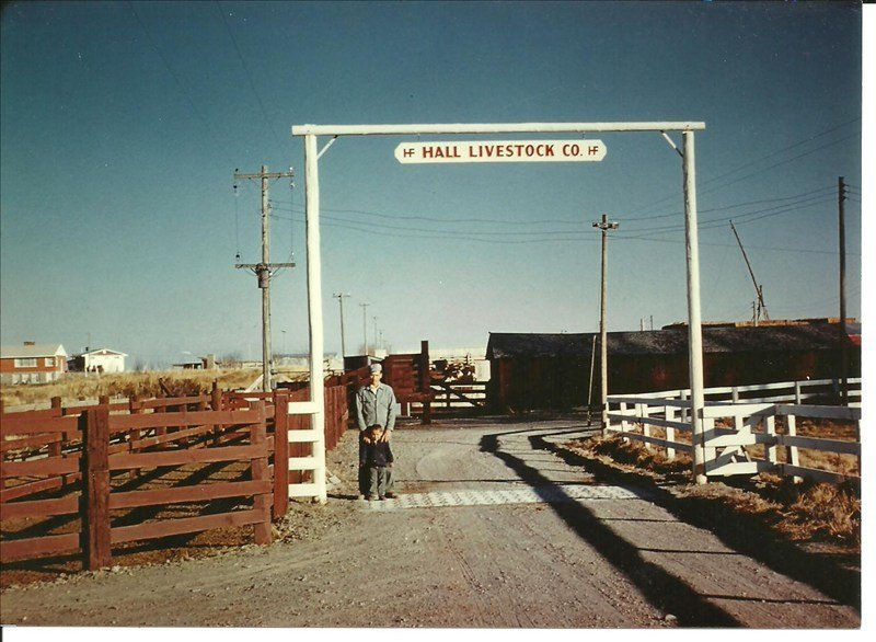 Forrest O. Hall and son Brent - Hall Livestock, 1950 - 1965